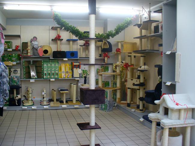 Arredamento negozi pet shop a pisa livorno toscana for Arredamento shop