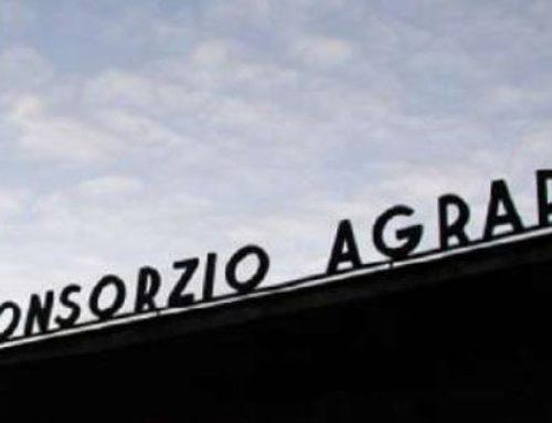 CONSORZIO AGRARIO PISA